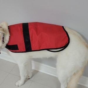 Dog Rain Coat 🐕